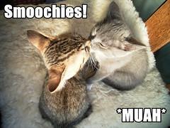 smoochies-muah