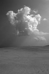 black and white humilis (virga) Tags: cumulus humilis