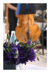 (Pereg_) Tags: flowers wedding music white purple creativephotographers