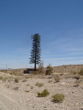 pine cellphone tree