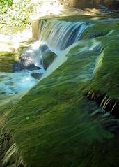 Decker Creek Falls - Side View (+David+) Tags: waterfall sideview fingerlakes lightandshade moraviany deckercreekfalls
