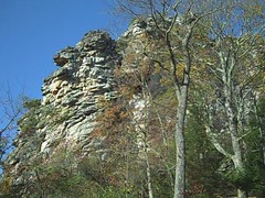Pinnacle Rock State Park: Bramwell, West Virginia (Dizzy Girl) Tags: statepark park autumn plants color fall nature leaves wildlife athens wv westvirginia princeton appalachian babcock foilage appalachia mercercounty fayetteville westvirgina wva bramwell pinnaclerock bluefield mountainstate