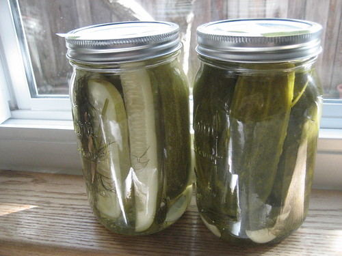 1st and 2nd batch of pickles