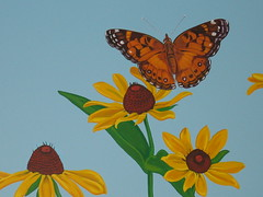 american painted lady butterfly and blackeyed susans (chelmsfordpubliclibrary) Tags: flowers summer usa black art leaves wall lady butterfly children ma us leaf mural susan library libraries painted massachusetts steve meadow murals daisy childrens coneflower eyed mass maloney cpl blackeyed chelmsford yetti chelmsfordpubliclibrary childrensroom chelmsfordma chelsford chelmsfordlibrary yettifrenkel stevemaloney muralchildrensroom chelsfordma