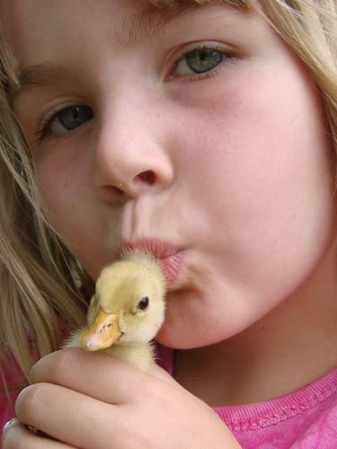 Duck Lovin'