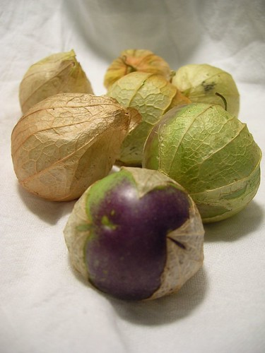 Tomatillos in their papery husks