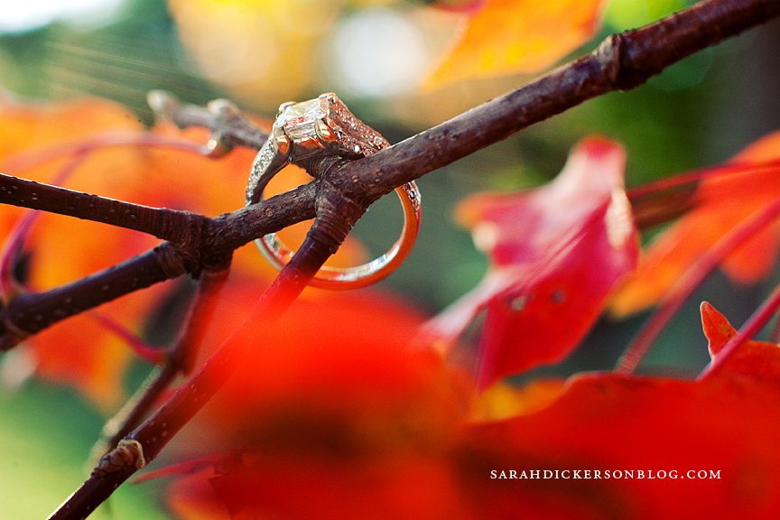 Loose Park engagement photos