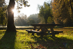 Fall sunrise (NaturalImagesPhoto) Tags: fall grass leaves table picnic warmth sunburst picinic naturalimagesphoto calebgarvin