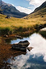 Tarn (Daniel Murray (southnz)) Tags: newzealand mountain reflection water trekking landscape scenery hiking nz southisland edwards tarn tussock tramping southnz eos50escanfromprint dwardshawdon fallingmountain
