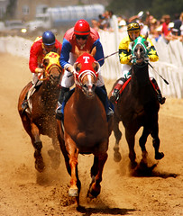 """july 2 """"just after the finish line"""" (coach Ed.B) Tags: pictures horses horse for rene jockey horseracing rider racehorse horserace horsetrack ajaxdowns picovdowns quarterhorseracing 14horse"""