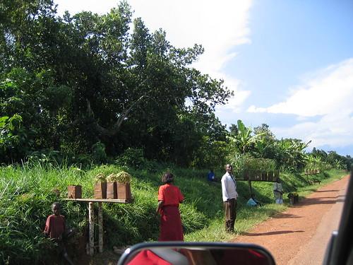 Uganda - Roadside Beans Shop