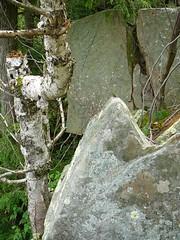 P1030371.jpg (airwaves1) Tags: 1000islands stlawrenceriver july282007 yeoisland