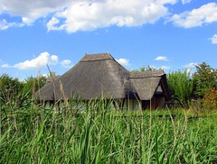 Thatched roof at London Wetland Centre