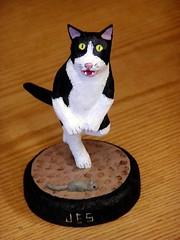 Kitty by Jes