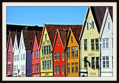 Bergen Bryggen:  nordic color    07.4134.54
