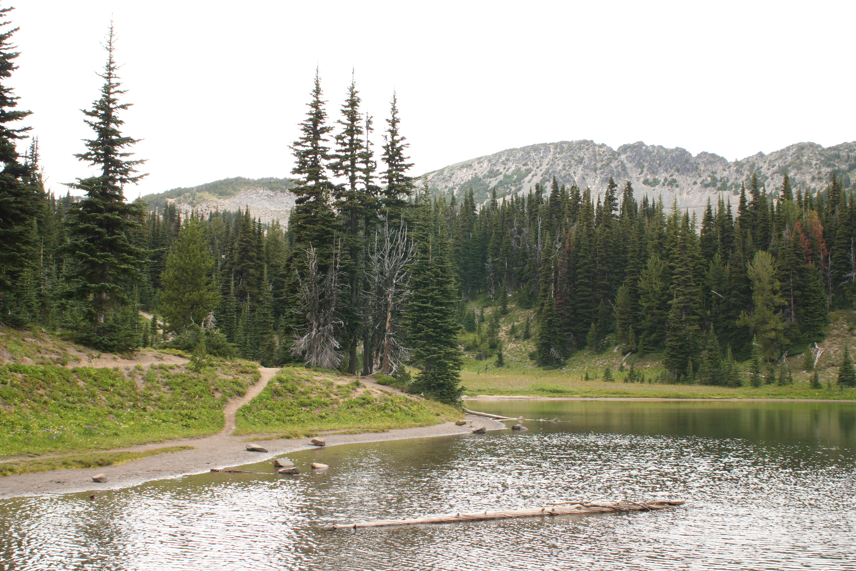 Shadow Lake Washington