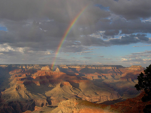 Canyon Rainbow 9531-2-e.jpg