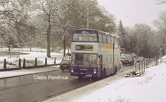 A white Tettenhall Green (Lady Wulfrun) Tags: road wood travel winter dog snow west bus green buses gun day snowy transport double 1998 lower winters regis midlands a41 501 decker mcw tettenhall 3109