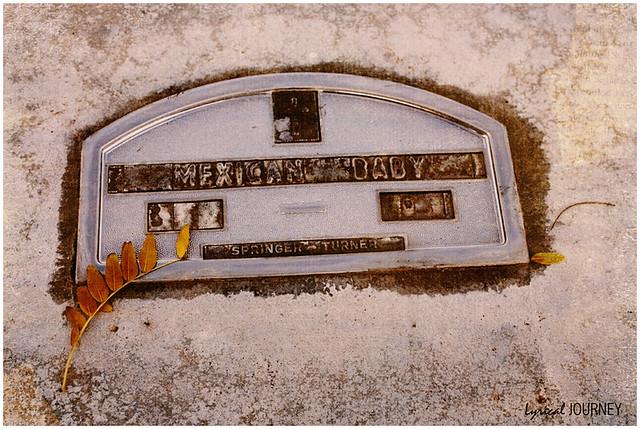Aurora Grave