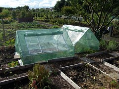 New plastic greenhouses