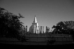 Anuradapura ruins 1 (crazyc78) Tags: history ruins anuradapura top20srilanka