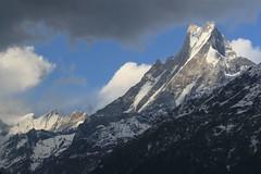 Trekking 0280 (neil_and_karen) Tags: nepal trekking annapurnabasecamp