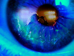speak2 (gwennie2006) Tags: blue irish reflection eye photoshop u2 army dc venus navy blueangles haight burn cnn bono sphere somerville mapplethorpe ap annie fixed marines thunderbirds apophenia deanna airforce somervillema usaf uso blueangels usnavy obama api winterland tutorial reuters cbs southboston usairforce aliceinwonderland atlanticrecords semperfi ashbury annieleibovitz usarmy blueangel lighteffect influence associatedpress usmarines robertmapplethorpe butterflyeffect fightingirish leibovitz somervillemassachusetts gwennie2006 aiws help massstatepolice deannacremin 4deanna justicefordeanna grfxdziner viewtutorial dcmemorialfoundation fixedgwennie2006 grfxphotographicart lesson5a lesson5aexample grfxdzinercom myfoxboston lesson3 lesson5 massachusetsstatepolice venuscd