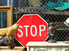 STOP in the name of Wynonas Big Brown Beaver () Tags: nyc red sign stuffed sale beaver taxidermy stop stopsign antiques primus thebiggestgroup kodakz612 10millionphotos trashbit