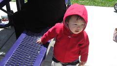 20070520 - 01 mcg picnic (heyannepark) Tags: kori 18months cutetoddler