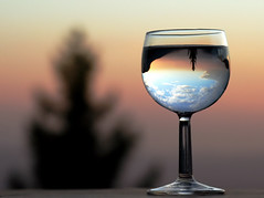 Upside Down Snowball (Firenzesca) Tags: sunset sky reflection tree glass snowball shiningstar musictomyeyes inspiredby blueribbonwinner splendiferous ducas amazingshot 35faves golddragon mywinners platinumphoto 30faves30commentsand300views superaplus aplusphoto flickrdiamond frhwofavs worldpicture colourartaward platinumheartaward artlegacy theperfectphotographer thegoldendreams firenzesca explore24september2007 shareyourbestwiththeworld