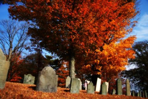 Graveyard 3 Orton-ish