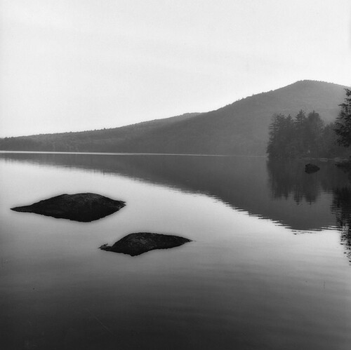 Sally Gall, Mondanock, 1991