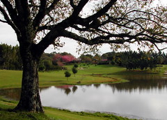 Itaara Golf (Claudio Marcon) Tags: brazil nature brasil golf natureza paisagem golfcourse rs itaara campodegolfe claudiomarcon araquem itaaragolfclub golfeemsantamariars claudiolmarconribeiro