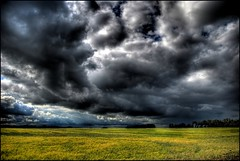 Alberta Tornado Watch (A guy with A camera) Tags: summer sky canada storm nature field rain weather clouds rural landscape nikon farm country sigma alberta land prairie 1020 hdr thunderstorms severeweather stormchasing stormchaser cloudydays d80 abigfave anawesomeshot impressedbeauty ultimateshot diamondclassphotographer torandowatch betterthangood skyascanvas