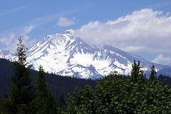 Mt Shasta, California (Cal Bear 94) Tags: california trees vacation mountain snow beautiful clouds forest windy snowcapped