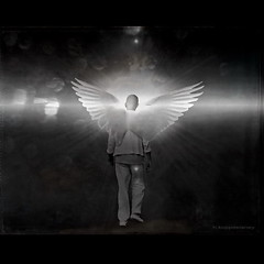 Angel of Fate (h.koppdelaney) Tags: life light white black art angel digital photoshop self dark idea licht wings energy darkness transformation state symbol god spirit picture sparkle fate destiny mind messenger engel awareness metaphor enlightenment consciousness psyche intuition symbolism psychology archetype transcendence schicksal mysticism koppdelaney