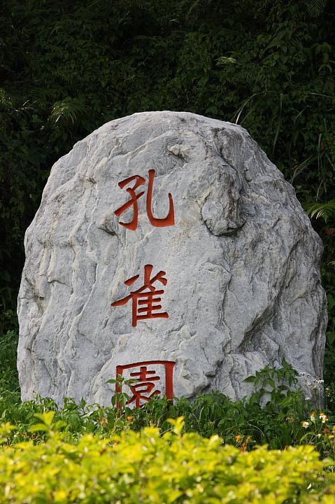 日月潭孔雀園017