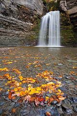Gold Coins (blypix) Tags: new york autumn ny fall yellow waterfall eagle finger havana lakes upstate falls cliffs glen foliage binhlyfineartforsale wwwblypixcom