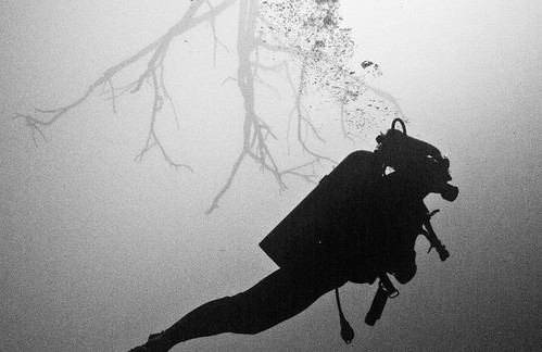 Cenote Angelita 07