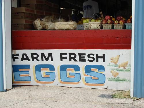 Farm Fresh Eggs Sign, Farmer's Market, Bham AL