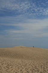 France | Great Dune of Pyla | alone (sempreverdebiga) Tags: ocean sea france canon eos mare bordeaux atlantic francia viaggi viaggio 2007 pyla 400d eos400d duneofpyla dunedipyla
