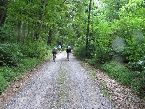 Gravel roads on the Catoctin Mountain ride