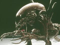 wp-alien-1-l