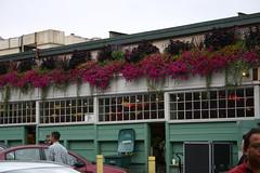 Flowers (KatRat2526) Tags: seattle flowers publicmarket