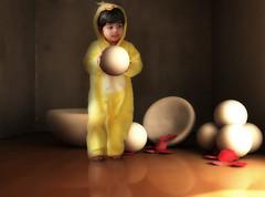 (mylaphotography) Tags: art chicken petals costume digitalart eggs holloween flowerpetals rahi childphotography jaber mylaphotography michiganstudiophotography fairytalephotography