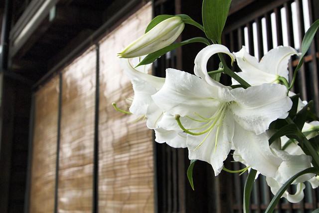 100815_133136_木曽_奈良井の街