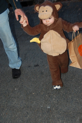 Oct2010 monkey costume