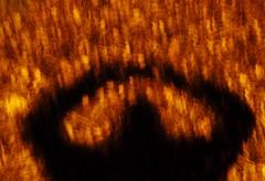 Shadow Land. (Brian Carter) Tags: camera blur night photography movement hand samsung devon held tavistock tamar nv7