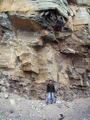 Estratificación de calizas / Limestone bedding