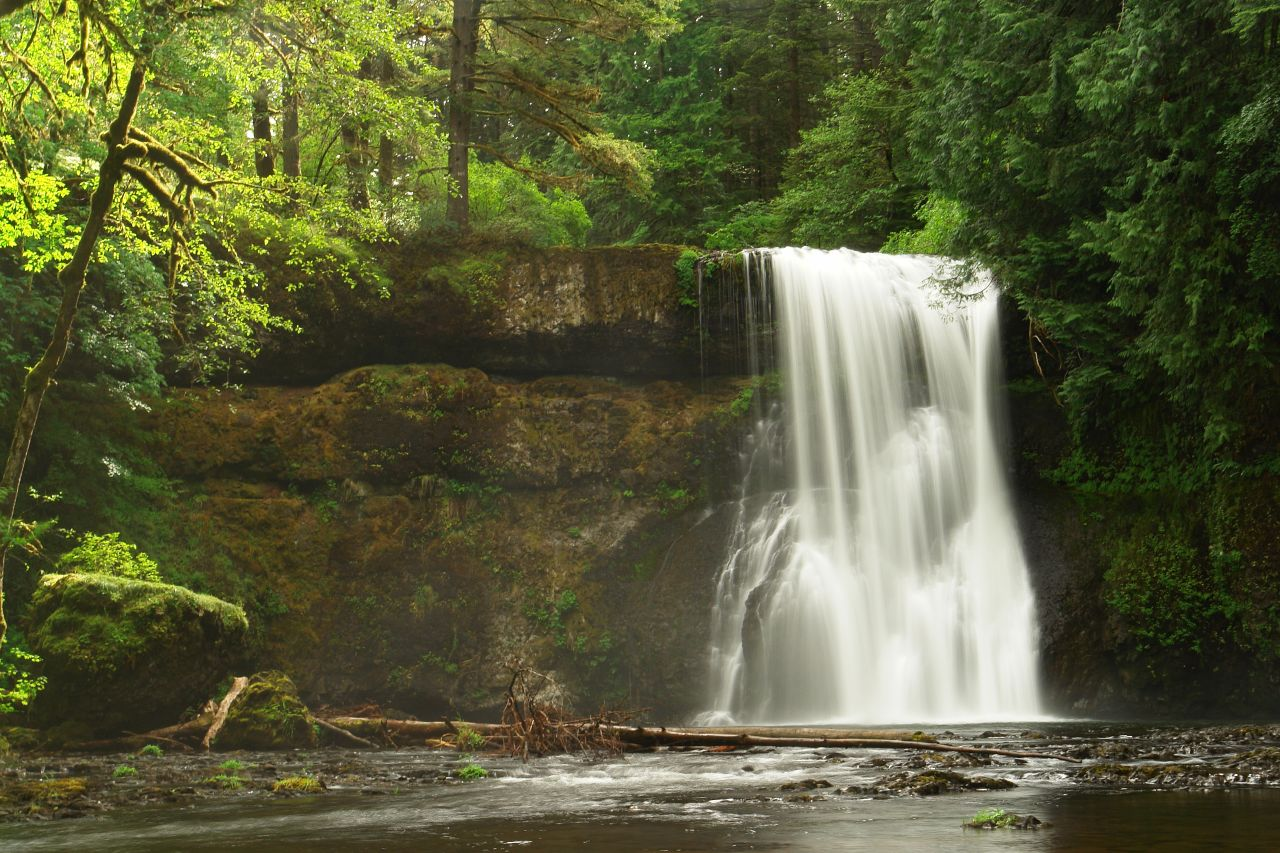 Photo of Silver Falls Trail